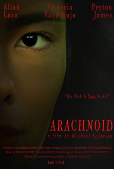 Arachnoid