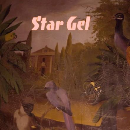 Star Gel