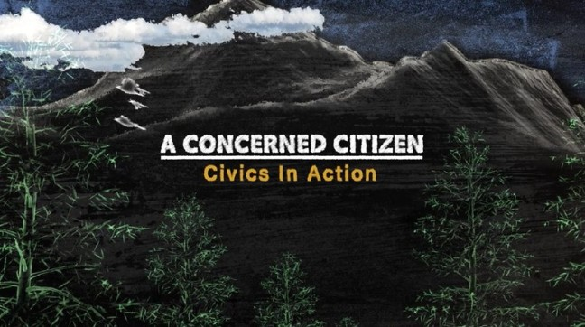 A Concerned Citizen: Civics in Action