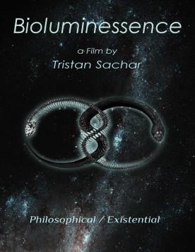 Bioluminessence